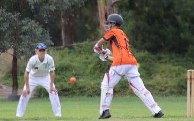 Wanna Play Cricket ?